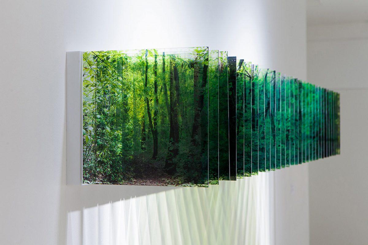 科技与艺术的融合:多层丙烯酸构成的三维景观